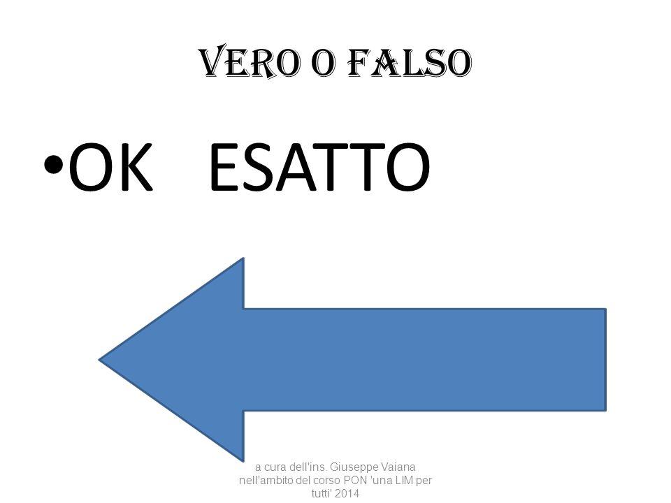 Vero o falso OK ESATTO a cura dell'ins. Giuseppe Vaiana nell'ambito del corso PON 'una LIM per tutti' 2014