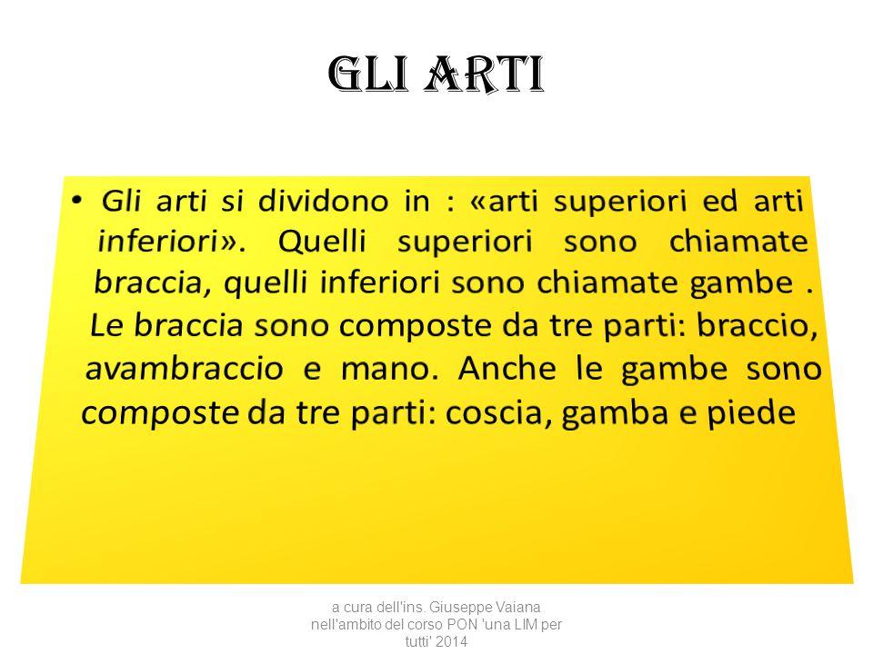 Gli arti a cura dell'ins. Giuseppe Vaiana nell'ambito del corso PON 'una LIM per tutti' 2014