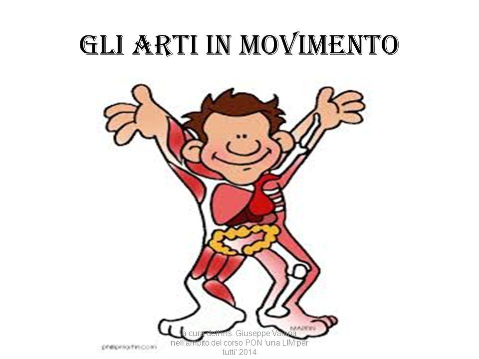 Gli arti in movimento a cura dell'ins. Giuseppe Vaiana nell'ambito del corso PON 'una LIM per tutti' 2014
