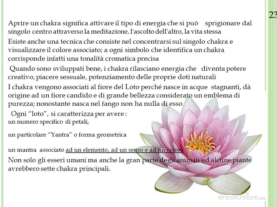 23/08/12 Aprire un chakra significa attivare il tipo di energia che si può sprigionare dal singolo centro attraverso la meditazione, l'ascolto dell'al