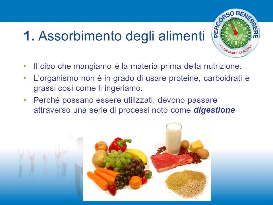 1. Assorbimento degli alimenti Il cibo che mangiamo è la materia prima della nutrizione. L'organismo non è in grado di usare proteine, carboidrati e g