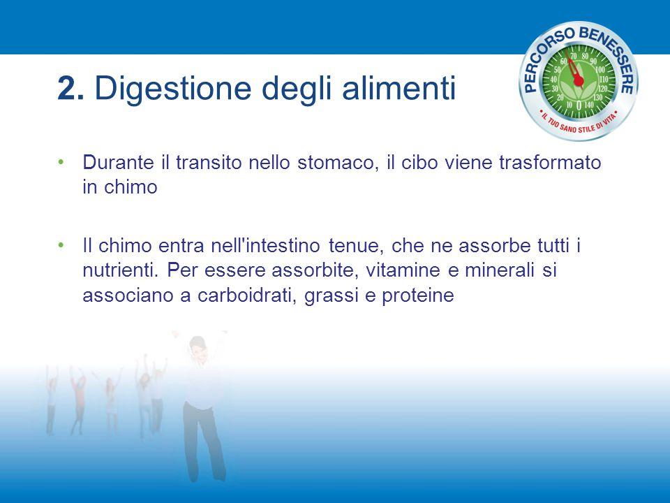 2. Digestione degli alimenti Durante il transito nello stomaco, il cibo viene trasformato in chimo Il chimo entra nell'intestino tenue, che ne assorbe