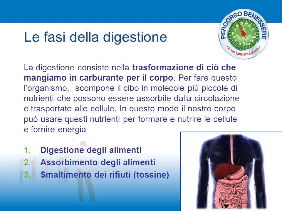 Le fasi della digestione 1.Digestione degli alimenti 2.Assorbimento degli alimenti 3.Smaltimento dei rifiuti (tossine) La digestione consiste nella tr