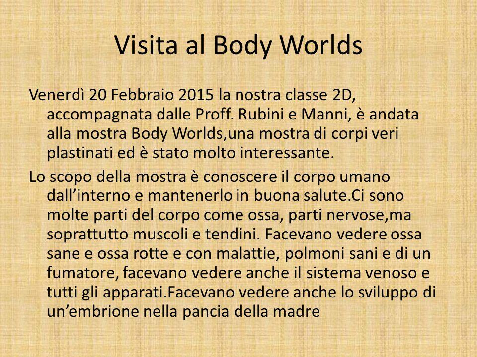 Visita al Body Worlds Venerdì 20 Febbraio 2015 la nostra classe 2D, accompagnata dalle Proff. Rubini e Manni, è andata alla mostra Body Worlds,una mos