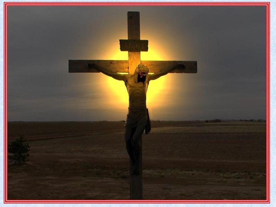 sangue dell'alleanza, nuova Calice Vino: pienezza della vita nella gioia Sangue- vita dell'agnello: sacrificio Versato per voi per tutti – molti: Servo In remissione dei peccati: fine