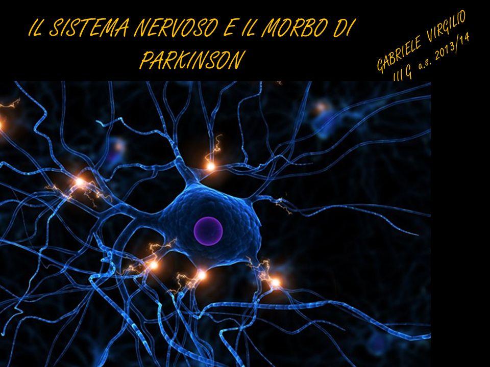 IL SISTEMA NERVOSO E IL MORBO DI PARKINSON GABRIELE VIRGILIO III G a.s. 2013/14