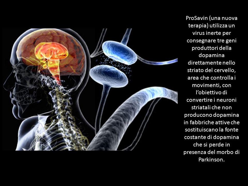 ProSavin (una nuova terapia) utilizza un virus inerte per consegnare tre geni produttori della dopamina direttamente nello striato del cervello, area
