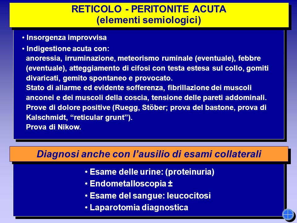 Diagnosi anche con l'ausilio di esami collaterali RETICOLO - PERITONITE ACUTA (elementi semiologici) RETICOLO - PERITONITE ACUTA (elementi semiologici