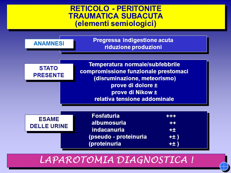 RETICOLO - PERITONITE TRAUMATICA SUBACUTA (elementi semiologici) RETICOLO - PERITONITE TRAUMATICA SUBACUTA (elementi semiologici) Pregressa indigestio