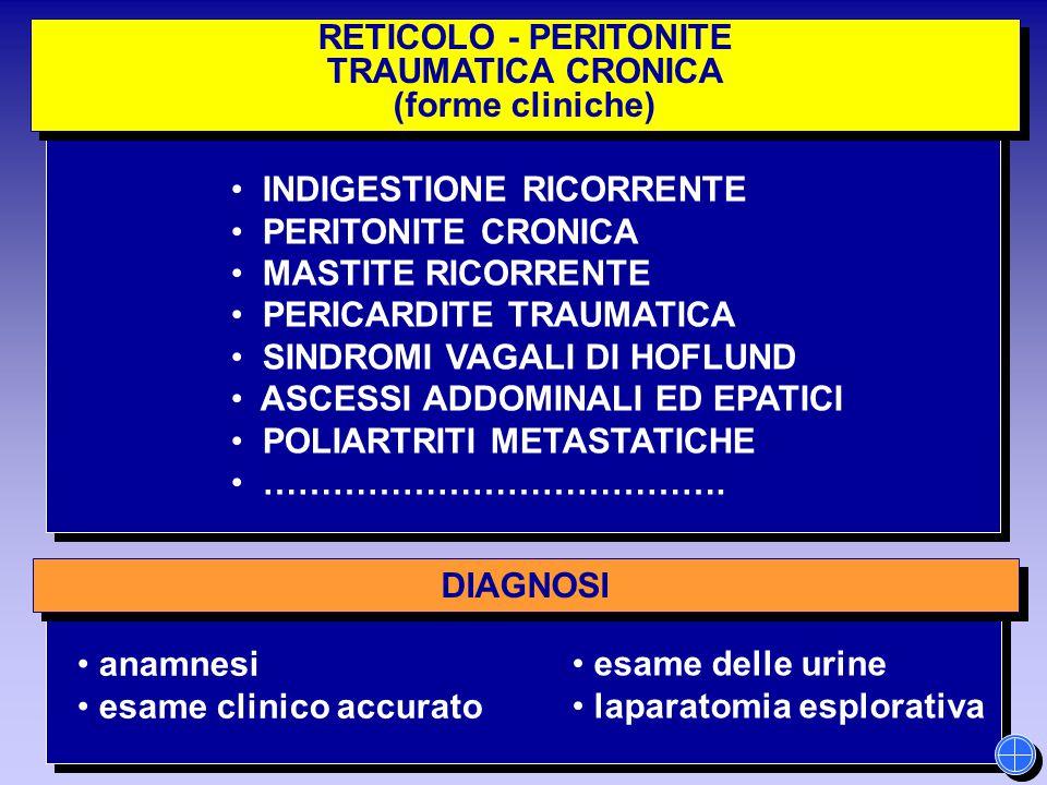 esame delle urine laparatomia esplorativa RETICOLO - PERITONITE TRAUMATICA CRONICA (forme cliniche) RETICOLO - PERITONITE TRAUMATICA CRONICA (forme cl