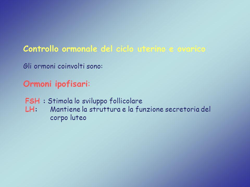 Controllo ormonale del ciclo uterino e ovarico Gli ormoni coinvolti sono: Ormoni ipofisari: FSH : Stimola lo sviluppo follicolare LH: Mantiene la stru