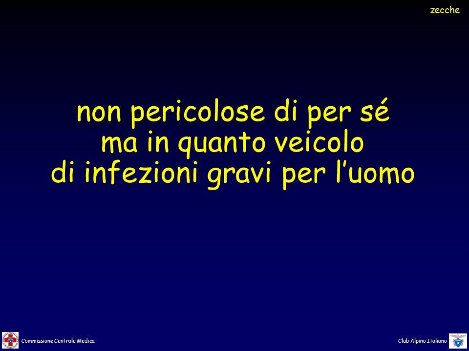 Commissione Centrale Medica Club Alpino Italiano non pericolose di per sé ma in quanto veicolo di infezioni gravi per l'uomo zecche