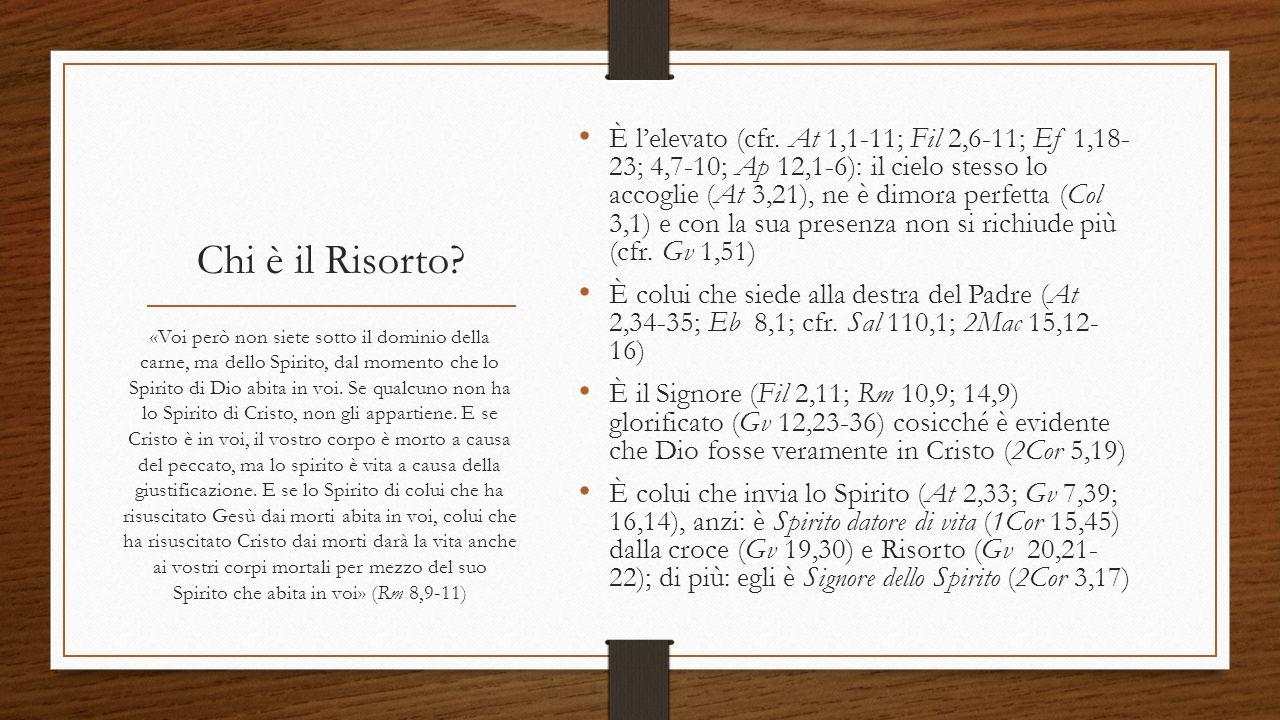 Chi è il Risorto? È l'elevato (cfr. At 1,1-11; Fil 2,6-11; Ef 1,18- 23; 4,7-10; Ap 12,1-6): il cielo stesso lo accoglie (At 3,21), ne è dimora perfett