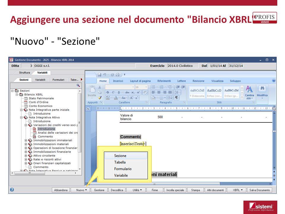 Nuovo - Sezione Aggiungere una sezione nel documento Bilancio XBRL