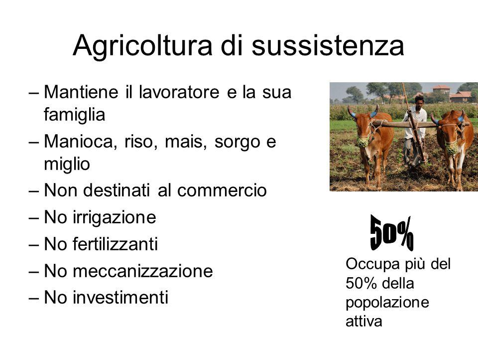 Agricoltura di sussistenza –Mantiene il lavoratore e la sua famiglia –Manioca, riso, mais, sorgo e miglio –Non destinati al commercio –No irrigazione