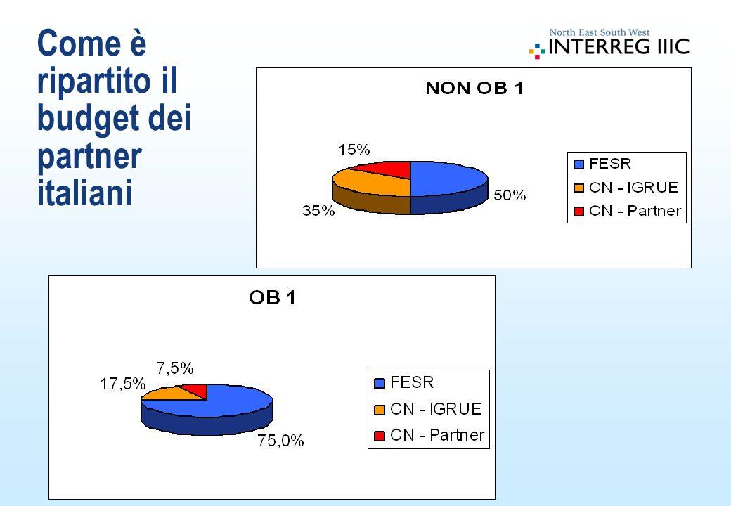 Come è ripartito il budget dei partner italiani