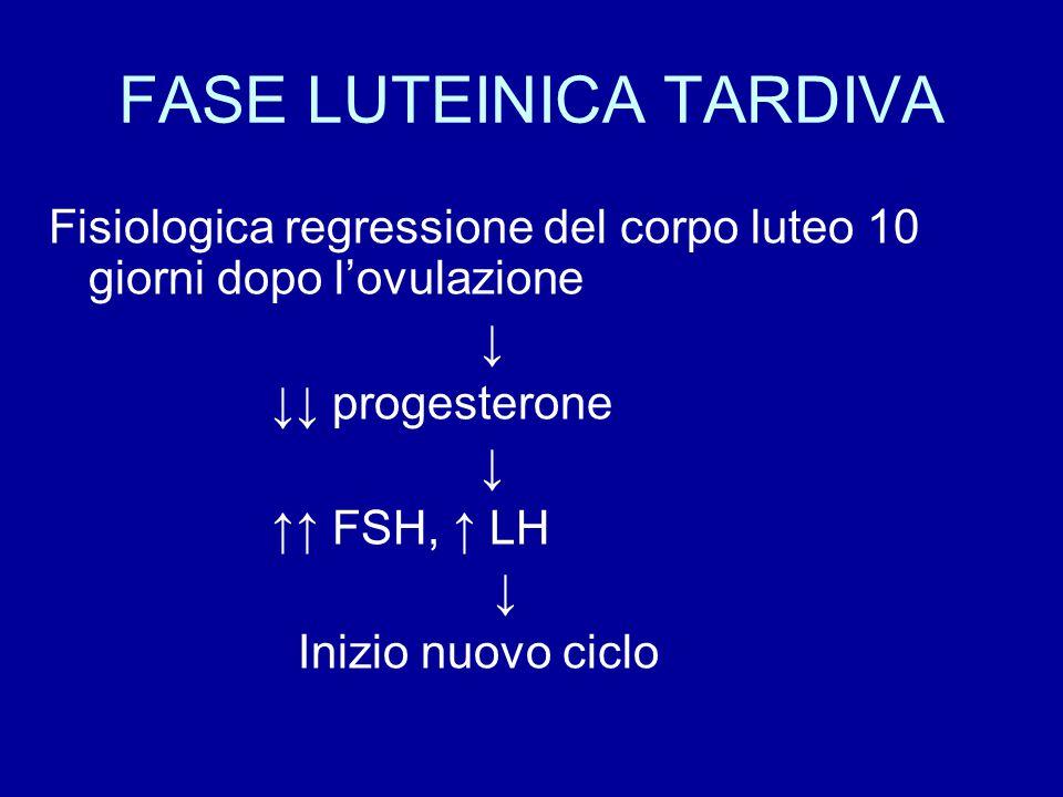 Fisiologica regressione del corpo luteo 10 giorni dopo l'ovulazione ↓ ↓↓ progesterone ↓ ↑↑ FSH, ↑ LH ↓ Inizio nuovo ciclo FASE LUTEINICA TARDIVA