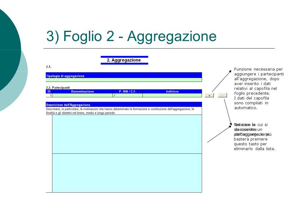 3) Foglio 2 - Aggregazione Funzione necessaria per aggiungere i partecipanti all'aggregazione, dopo aver inserito i dati relativi al capofila nel fogl