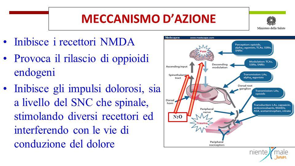 MECCANISMO D'AZIONE Inibisce i recettori NMDA Provoca il rilascio di oppioidi endogeni Inibisce gli impulsi dolorosi, sia a livello del SNC che spinal