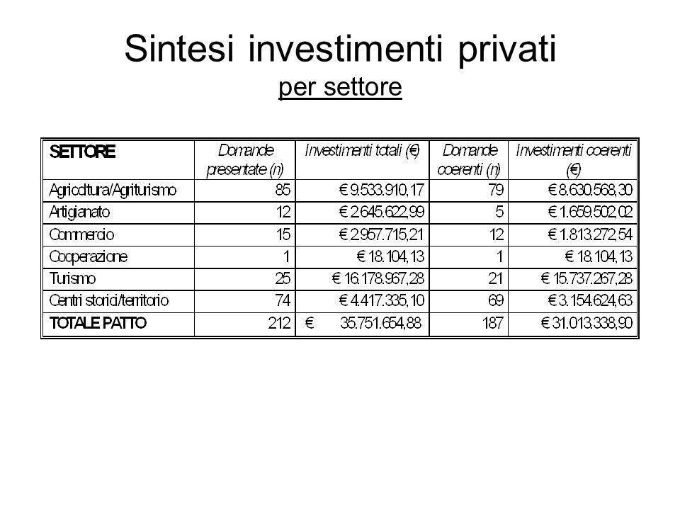Sintesi investimenti privati per tipologia investimento