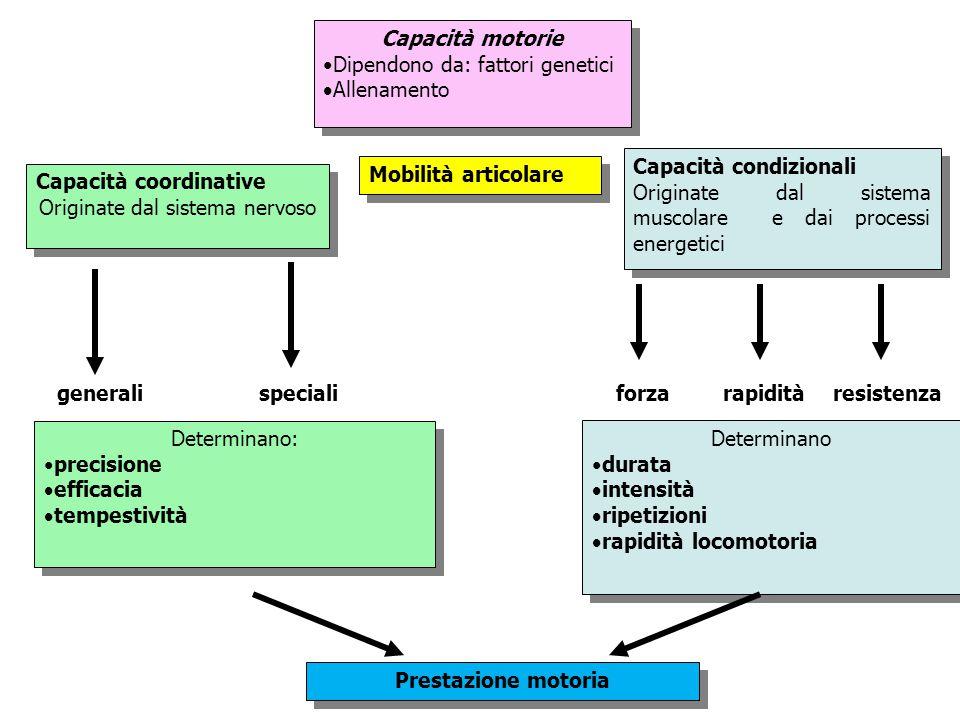 Capacità motorie Dipendono da: fattori genetici  Allenamento Capacità motorie Dipendono da: fattori genetici  Allenamento Capacità coordinative Orig