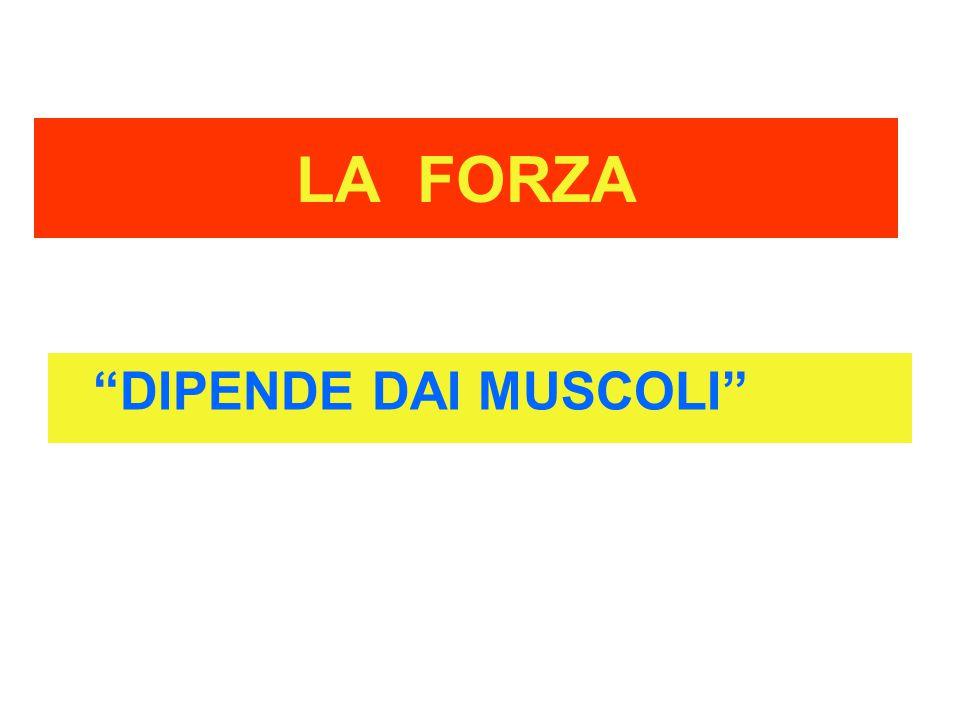 """LA FORZA """"DIPENDE DAI MUSCOLI"""""""