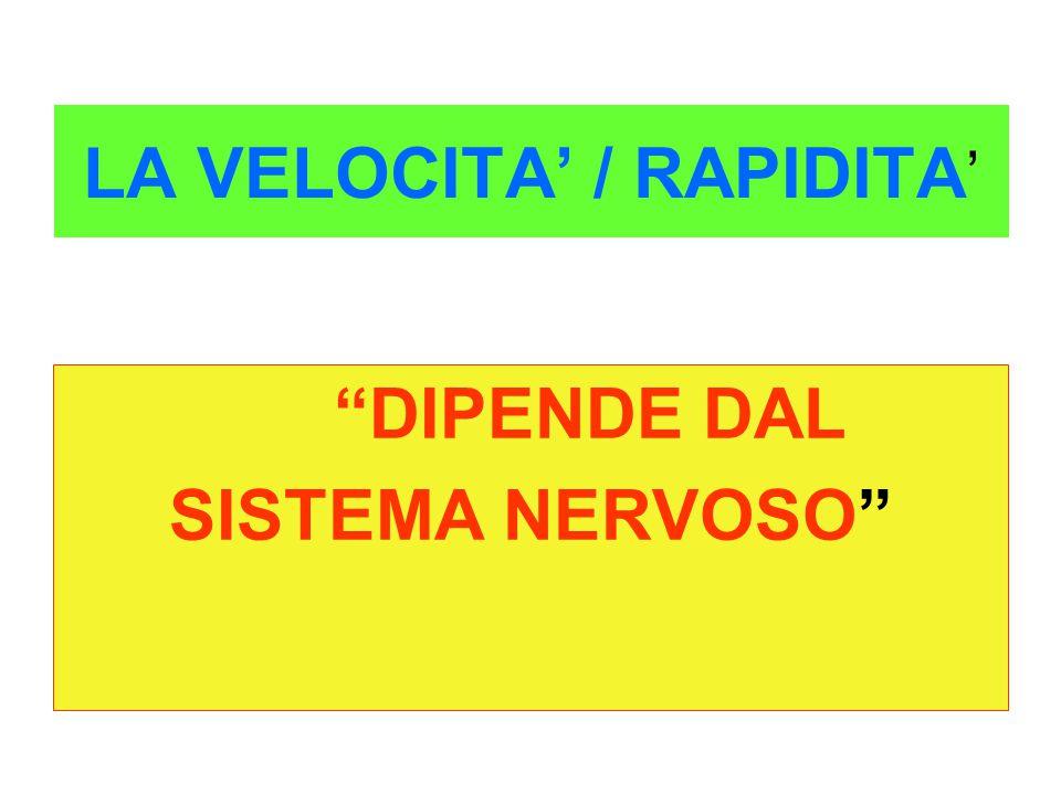"LA VELOCITA' / RAPIDITA ' ""DIPENDE DAL SISTEMA NERVOSO"""