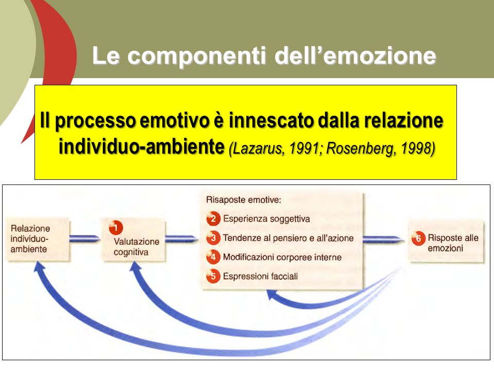 Le componenti dell'emozione Il processo emotivo è innescato dalla relazione individuo-ambiente (Lazarus, 1991; Rosenberg, 1998) 7