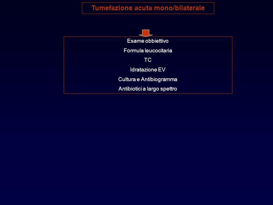 Tumefazione acuta mono/bilaterale Esame obbiettivo Formula leucocitaria TC Idratazione EV Cultura e Antibiogramma Antibiotici a largo spettro