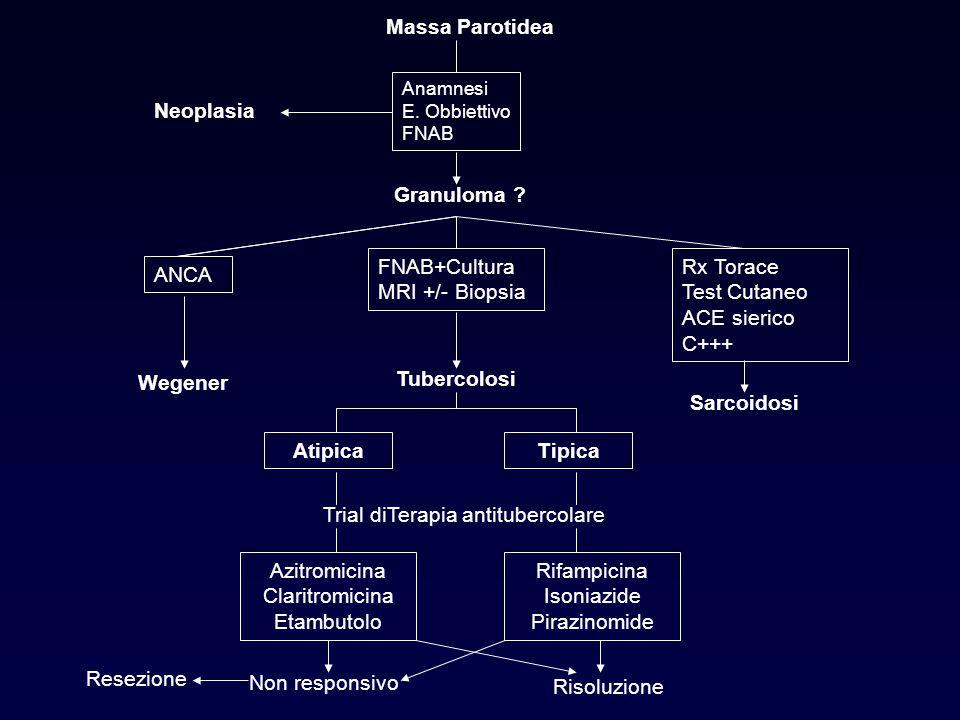Massa Parotidea Anamnesi E. Obbiettivo FNAB Neoplasia Granuloma ? ANCA FNAB+Cultura MRI +/- Biopsia Rx Torace Test Cutaneo ACE sierico C+++ Wegener Sa