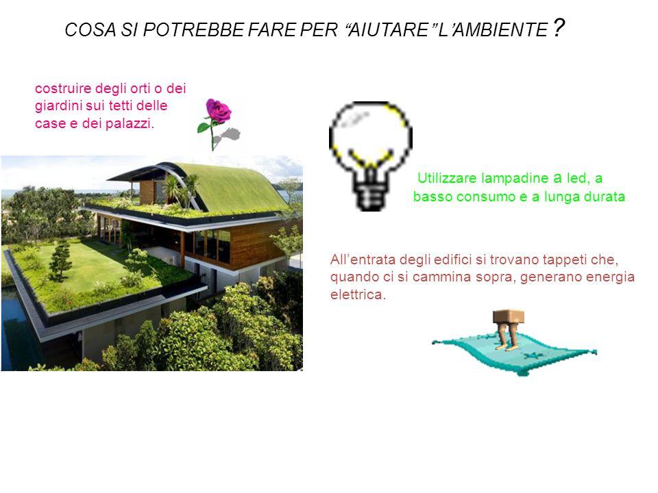 Utilizzare lampadine a led, a basso consumo e a lunga durata. costruire degli orti o dei giardini sui tetti delle case e dei palazzi. COSA SI POTREBBE
