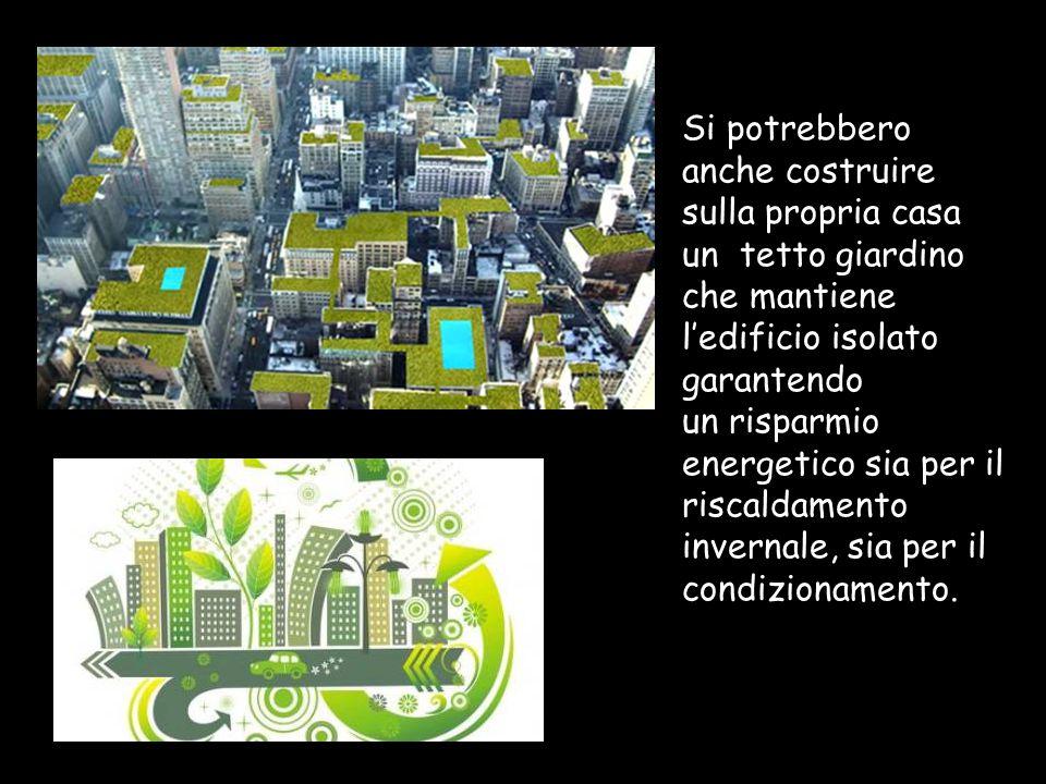 I pannelli fotovoltaici ed il tetto delle case: Sui tetti giardino si possono montare i pannelli fotovoltaici, che permettono di produrre energia elettrica, di giorno.
