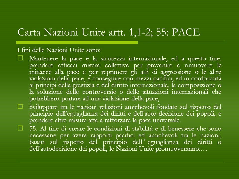 Carta Nazioni Unite artt.