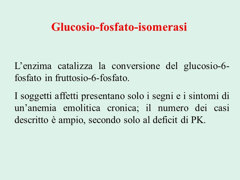 Glucosio-fosfato-isomerasi L'enzima catalizza la conversione del glucosio-6- fosfato in fruttosio-6-fosfato. I soggetti affetti presentano solo i segn