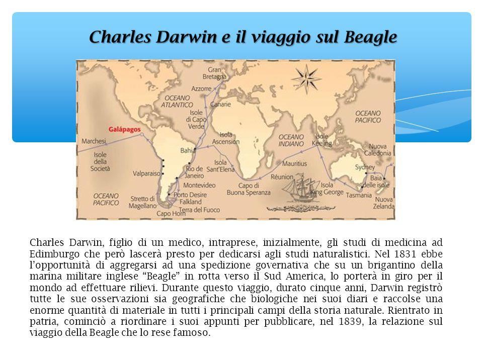 Charles Darwin, figlio di un medico, intraprese, inizialmente, gli studi di medicina ad Edimburgo che però lascerà presto per dedicarsi agli studi nat