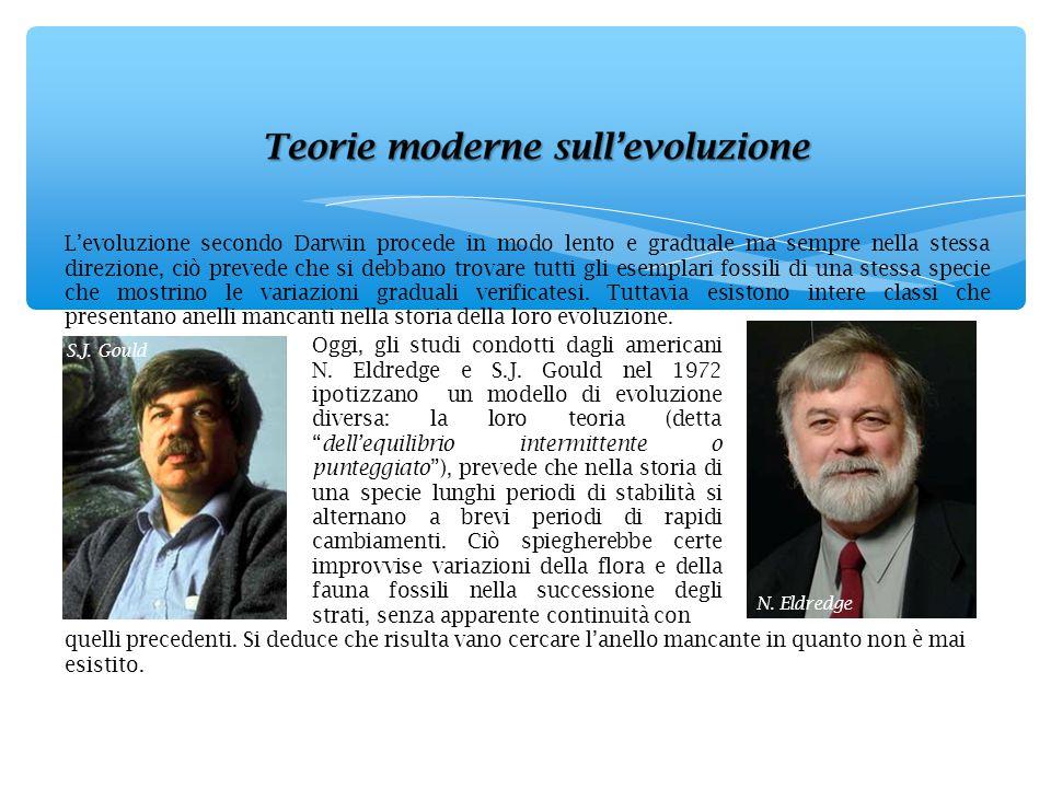 L'evoluzione secondo Darwin procede in modo lento e graduale ma sempre nella stessa direzione, ciò prevede che si debbano trovare tutti gli esemplari