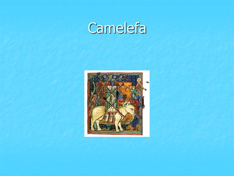 Camelefa