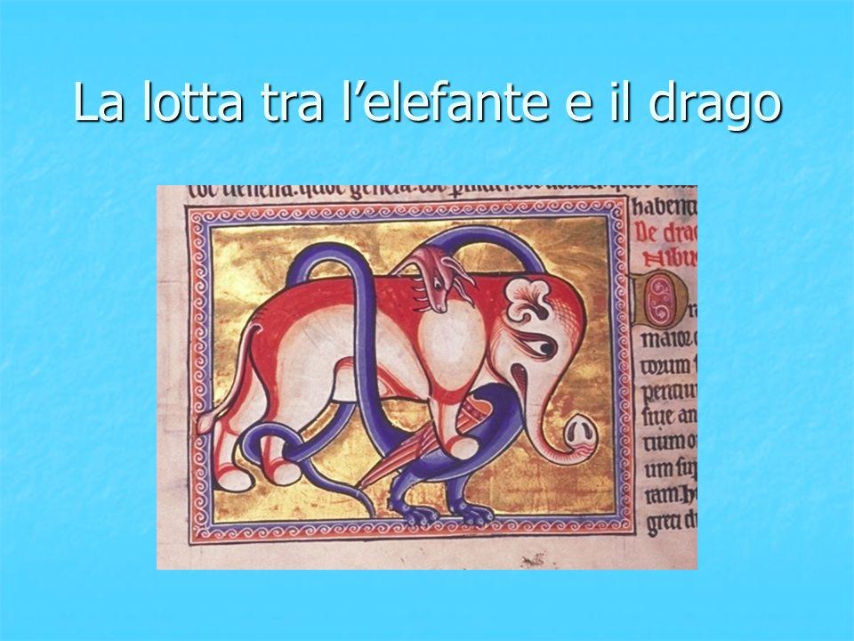 La lotta tra l'elefante e il drago