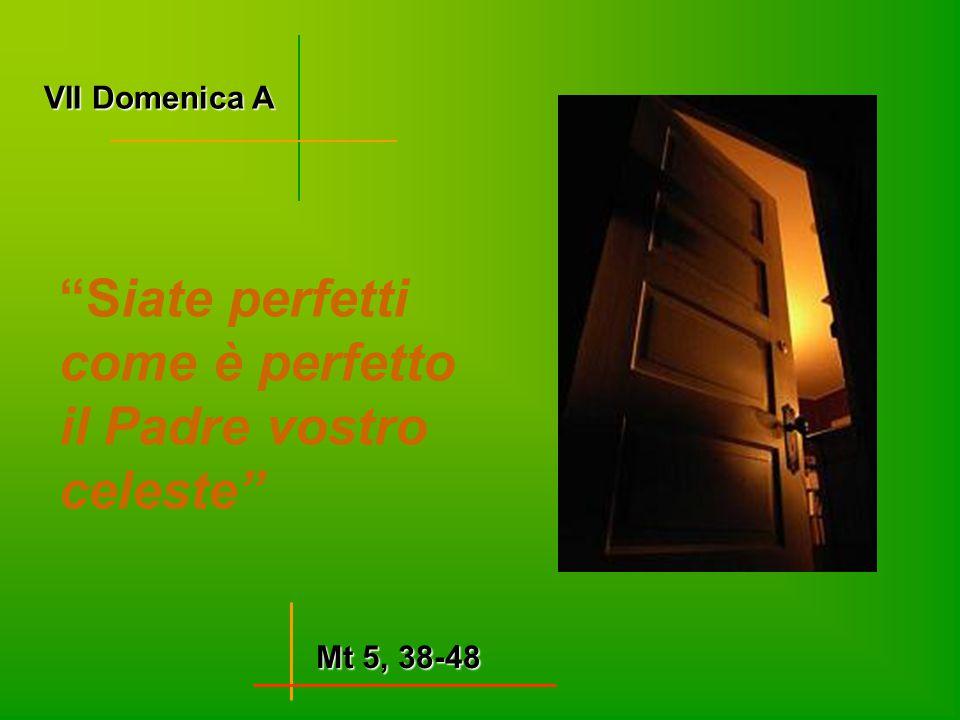 """VII Domenica A Mt 5, 38-48 """"Siate perfetti come è perfetto il Padre vostro celeste"""""""