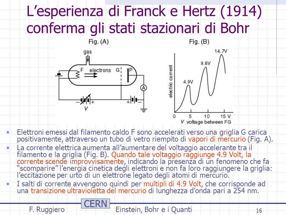 CERN F. RuggieroEinstein, Bohr e i Quanti 16 L'esperienza di Franck e Hertz (1914) conferma gli stati stazionari di Bohr Elettroni emessi dal filament