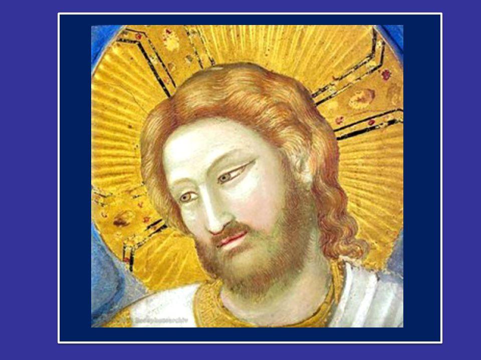 Benedetto XVI ha introdotto la preghiera mariana dell' Angelus dal Palazzo Apostolico di Piazza San Pietro nella XXXIII c Domenica del Tempo Ordinario