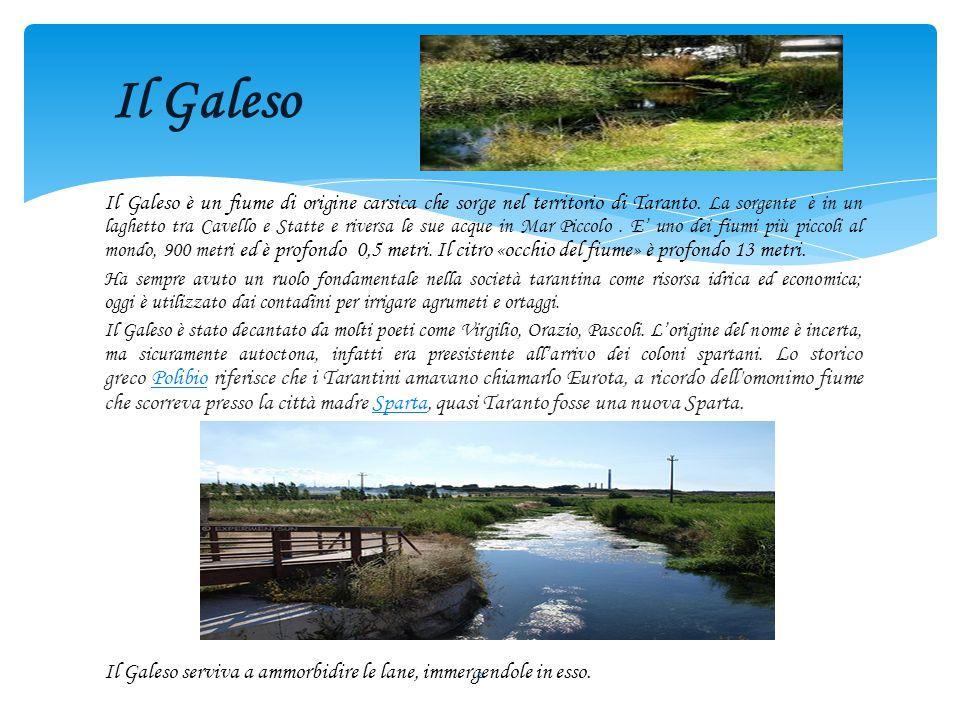 Il Galeso è un fiume di origine carsica che sorge nel territorio di Taranto.