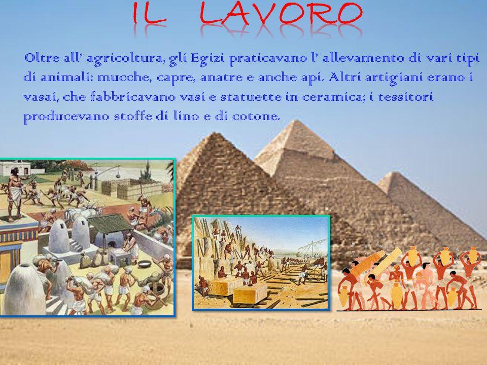 Oltre all' agricoltura, gli Egizi praticavano l' allevamento di vari tipi di animali: mucche, capre, anatre e anche api. Altri artigiani erano i vasai