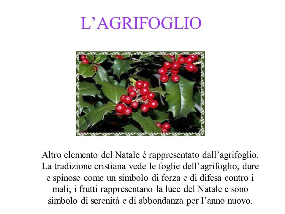 L'AGRIFOGLIO Altro elemento del Natale è rappresentato dall'agrifoglio.
