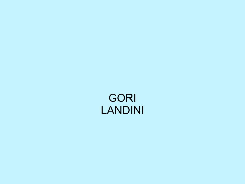 GORI LANDINI