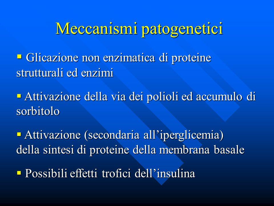 Meccanismi patogenetici  Glicazione non enzimatica di proteine strutturali ed enzimi  Attivazione della via dei polioli ed accumulo di sorbitolo  Attivazione (secondaria all'iperglicemia) della sintesi di proteine della membrana basale  Possibili effetti trofici dell'insulina