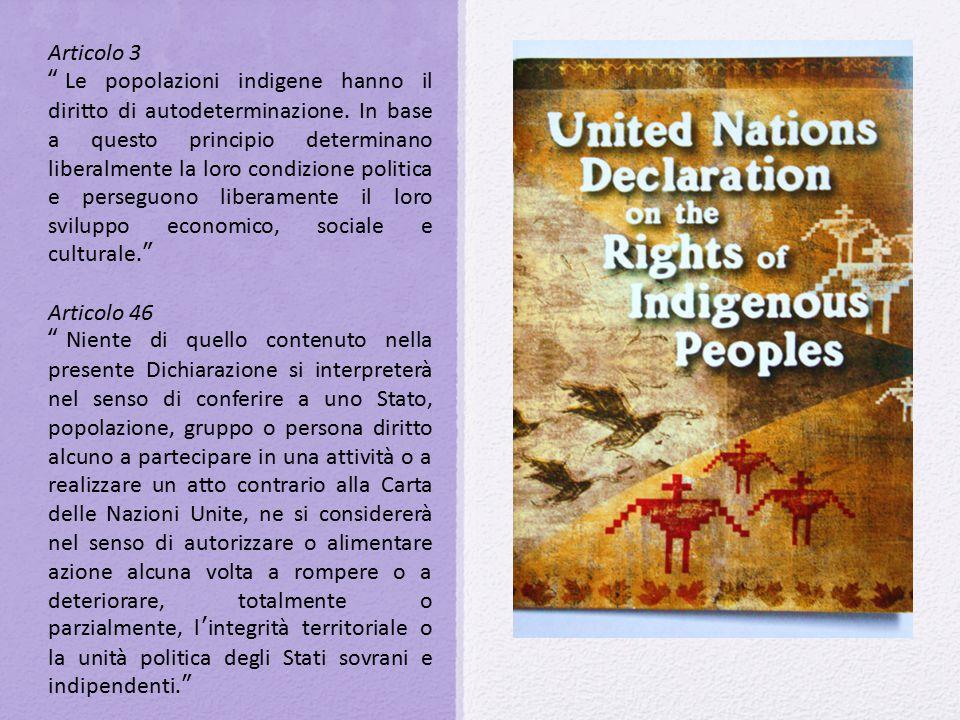 """Articolo 3 """"Le popolazioni indigene hanno il diritto di autodeterminazione. In base a questo principio determinano liberalmente la loro condizione pol"""