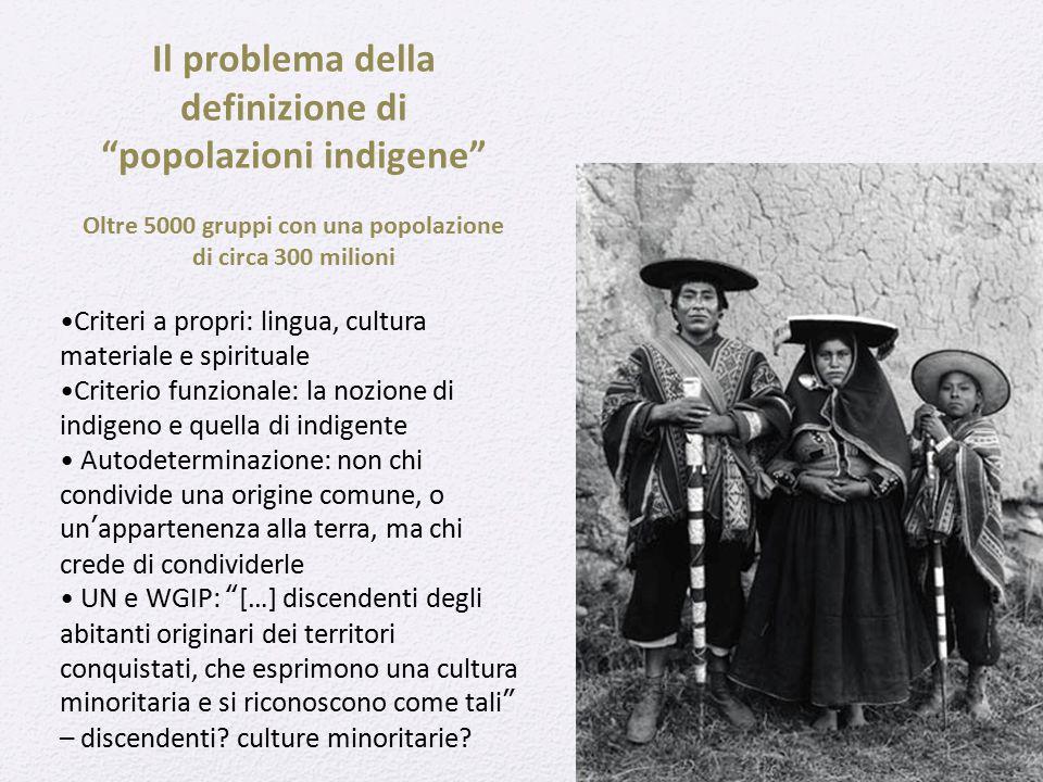 """Il problema della definizione di """"popolazioni indigene"""" Oltre 5000 gruppi con una popolazione di circa 300 milioni Criteri a propri: lingua, cultura m"""