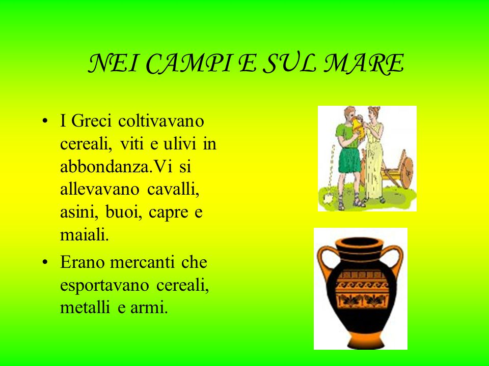 NEI CAMPI E SUL MARE I Greci coltivavano cereali, viti e ulivi in abbondanza.Vi si allevavano cavalli, asini, buoi, capre e maiali. Erano mercanti che