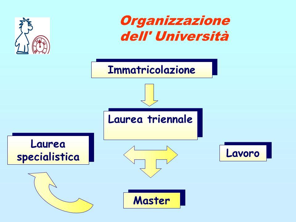 Immatricolazione Laurea triennale Laurea specialistica Lavoro Master Organizzazione dell Università